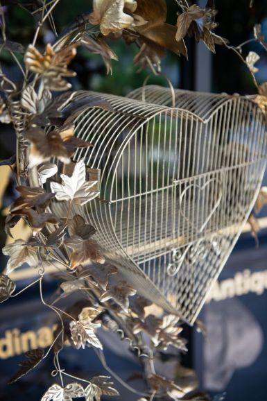 Bird Cage Close Up